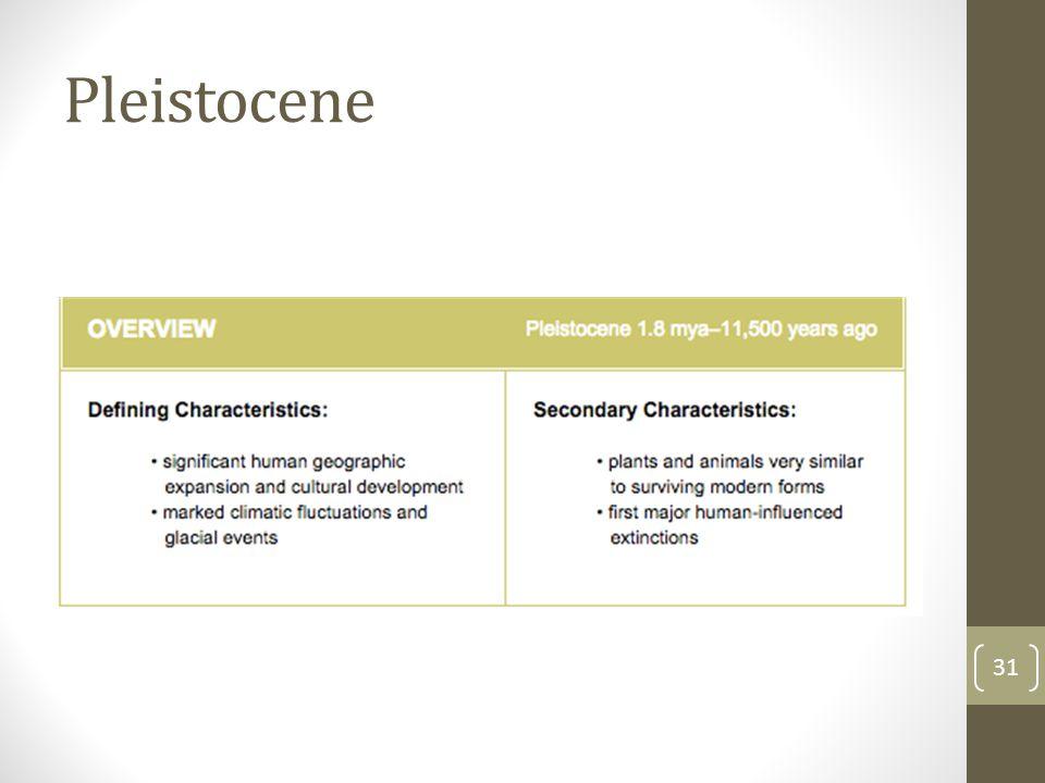 Pleistocene 31