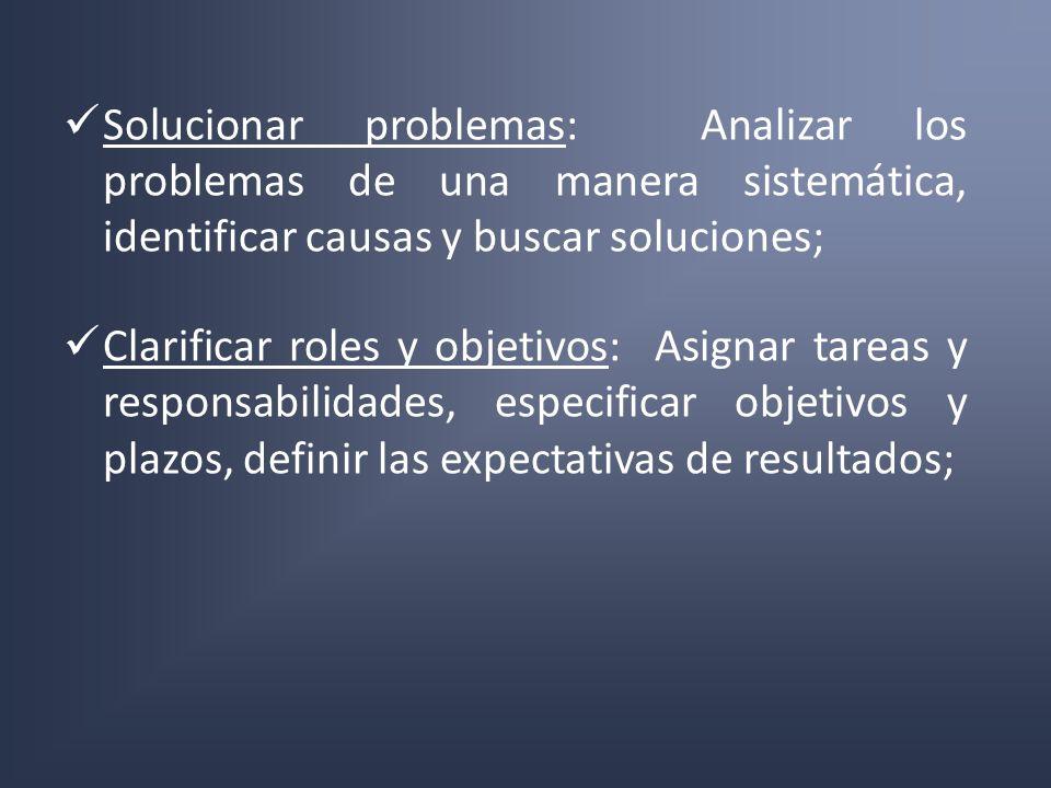 Solucionar problemas: Analizar los problemas de una manera sistemática, identificar causas y buscar soluciones; Clarificar roles y objetivos: Asignar