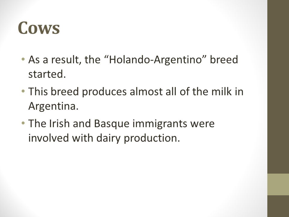 """Cows As a result, the """"Holando-Argentino"""" breed started. This breed produces almost all of the milk in Argentina. The Irish and Basque immigrants were"""