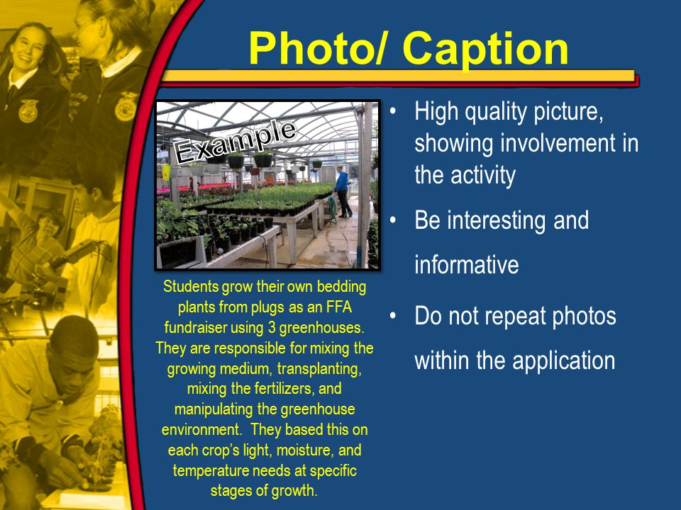 High quality picture, showing involvement in the activity Be interesting and informative Do not repeat photos within the application Students grow their own bedding plants from plugs as an FFA fundraiser using 3 greenhouses.