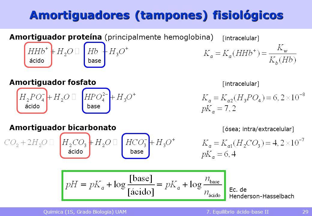 Química (1S, Grado Biología) UAM 7. Equilibrio ácido-base II 29 Amortiguadores (tampones) fisiológicos Amortiguador proteína (principalmente hemoglobi
