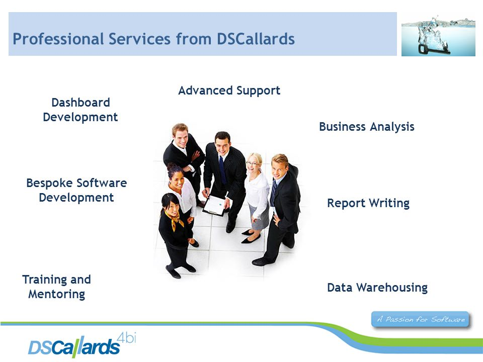 Dashboard Development Business Analysis Report Writing Data Warehousing Training and Mentoring Bespoke Software Development Advanced Support Professional Services from DSCallards