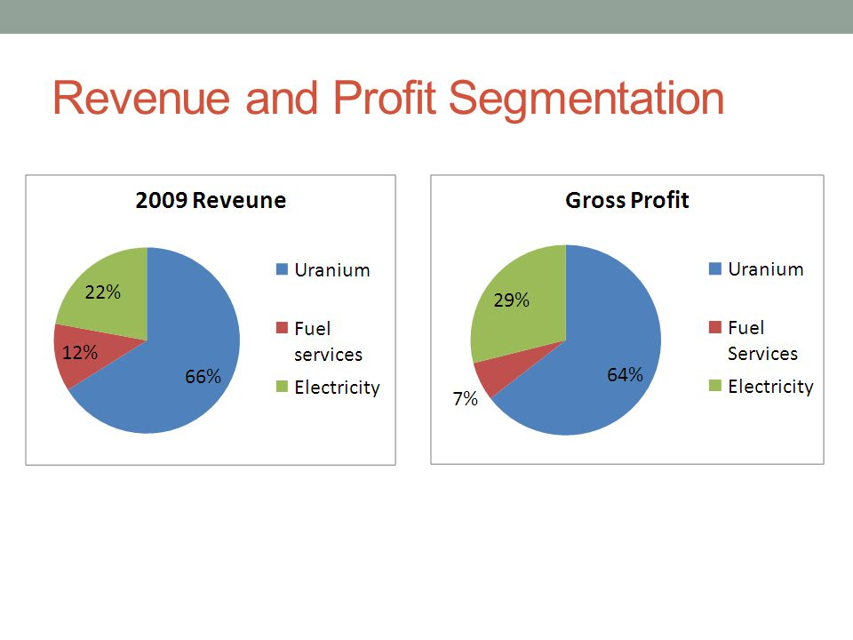 Revenue and Profit Segmentation