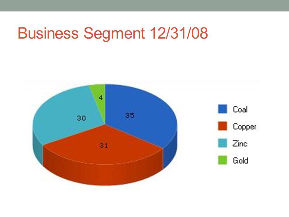Business Segment 12/31/08