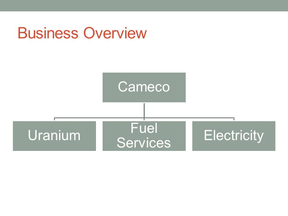Business Overview Cameco Uranium Fuel Services Electricity