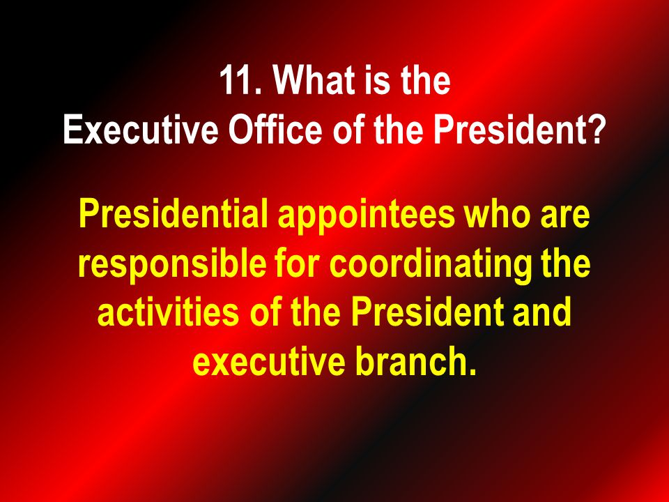Presidential appointees who are responsible for coordinating the activities of the President and executive branch.