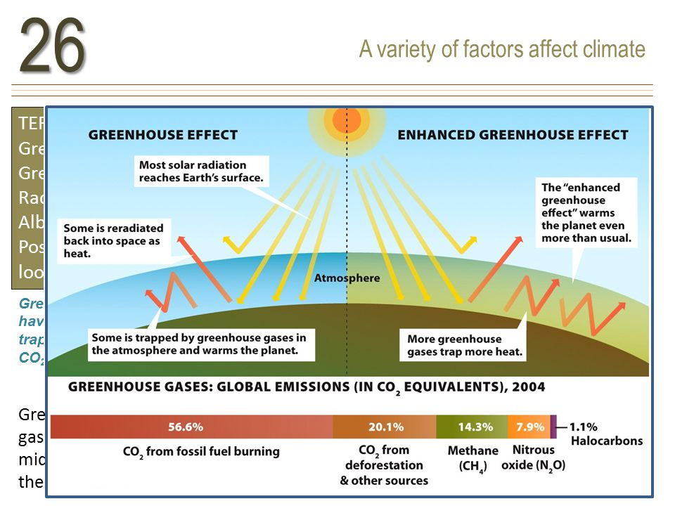 A variety of factors affect climate26 TERMS TO KNOW Greenhouse gases Greenhouse effect Radiative forcer Albedo Positive feedback loops Greenhouse gases include carbon dioxide, methane, and nitrous oxide.