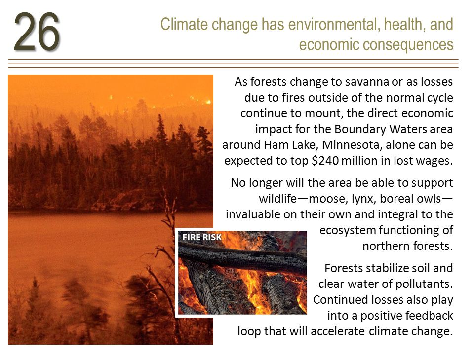 Climate change has environmental, health, and economic consequences26 As forests change to savanna or as losses due to fires outside of the normal cycle continue to mount, the direct economic impact for the Boundary Waters area around Ham Lake, Minnesota, alone can be expected to top $240 million in lost wages.