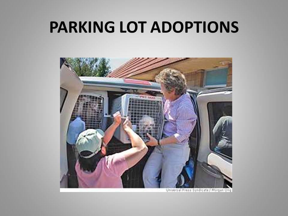 PARKING LOT ADOPTIONS