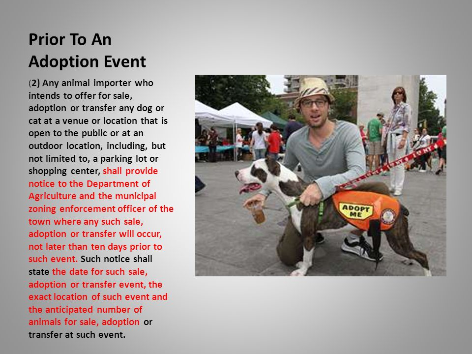 Prior To An Adoption Event ( 2) Any animal importer who intends to offer for sale, adoption or transfer any dog or cat at a venue or location that is