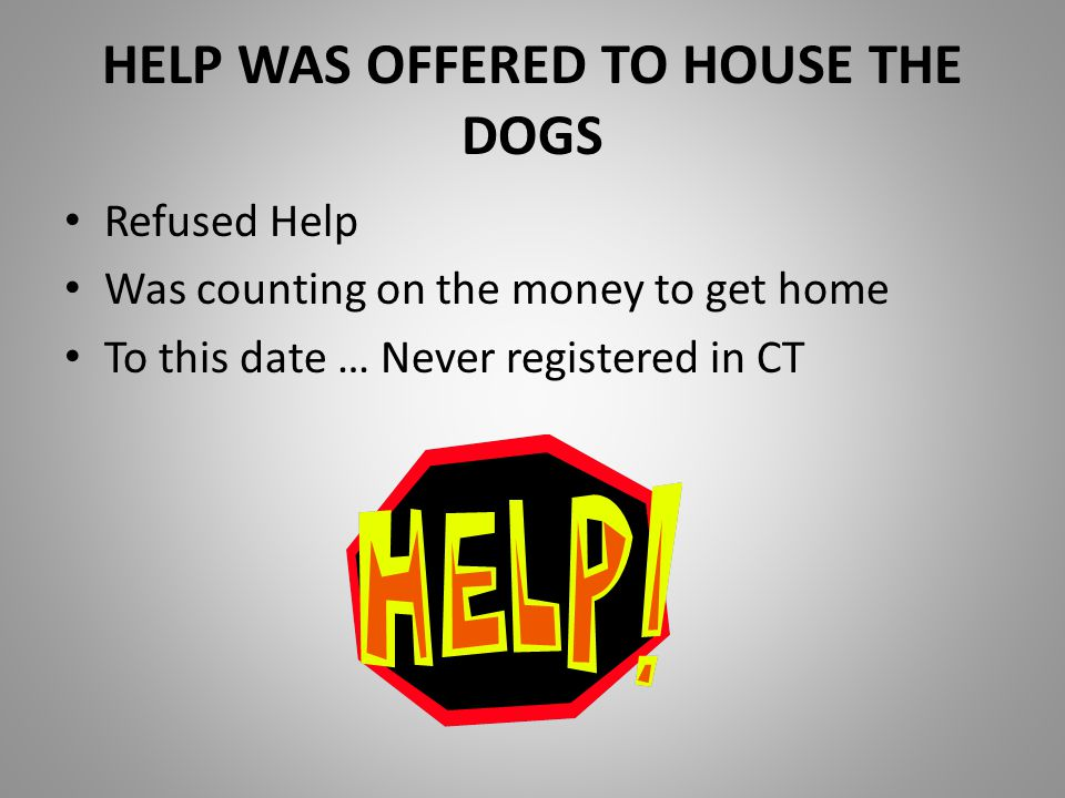 HELP WAS OFFERED TO HOUSE THE DOGS Refused Help Was counting on the money to get home To this date … Never registered in CT