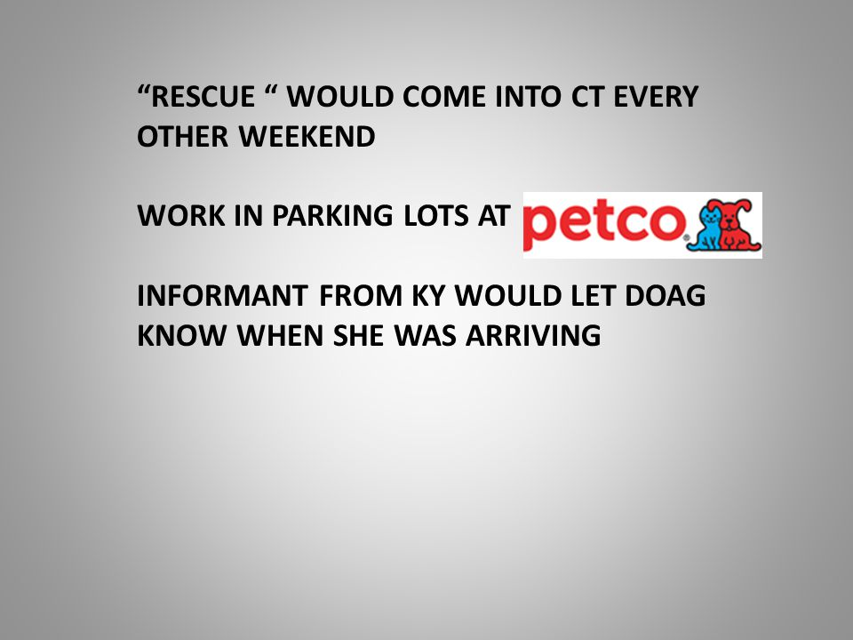 RESCUE WOULD COME INTO CT EVERY OTHER WEEKEND WORK IN PARKING LOTS AT INFORMANT FROM KY WOULD LET DOAG KNOW WHEN SHE WAS ARRIVING
