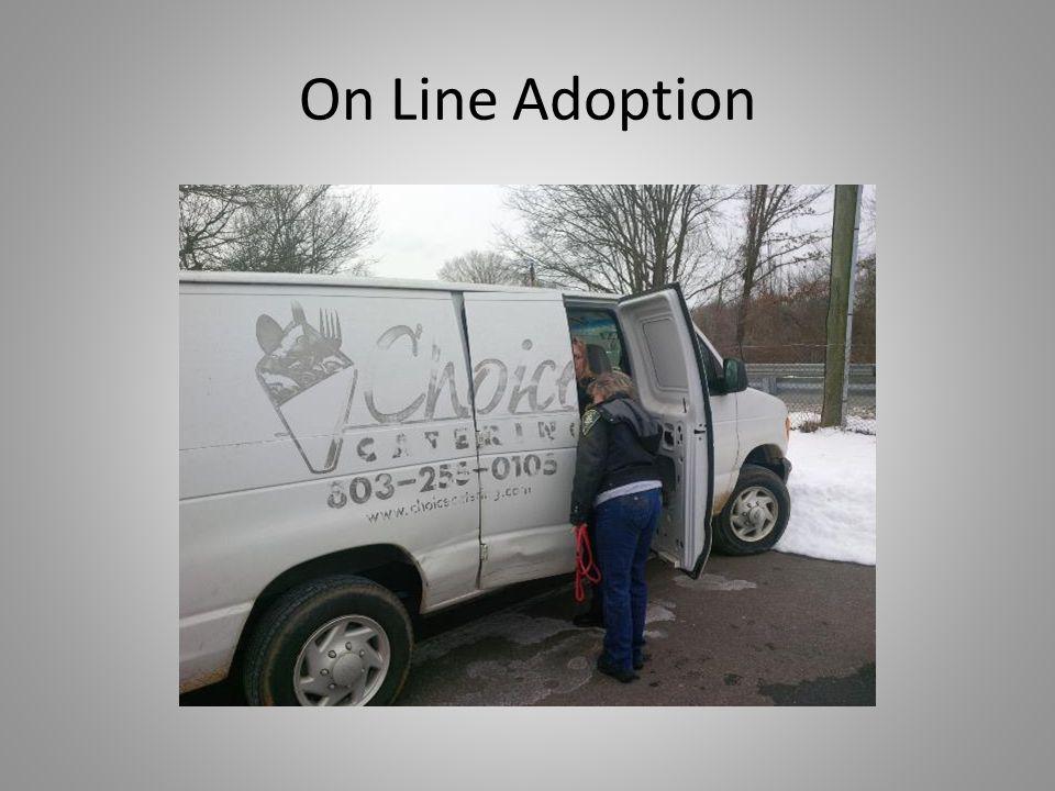 On Line Adoption