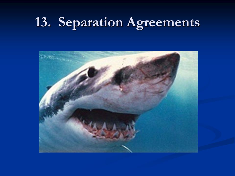 13. Separation Agreements