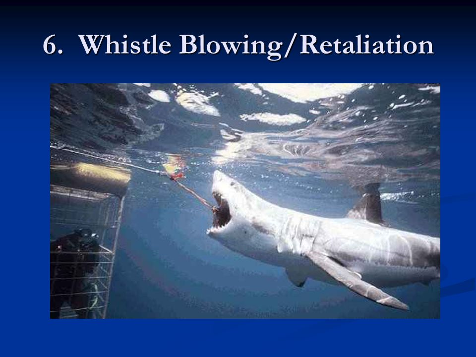 6. Whistle Blowing/Retaliation