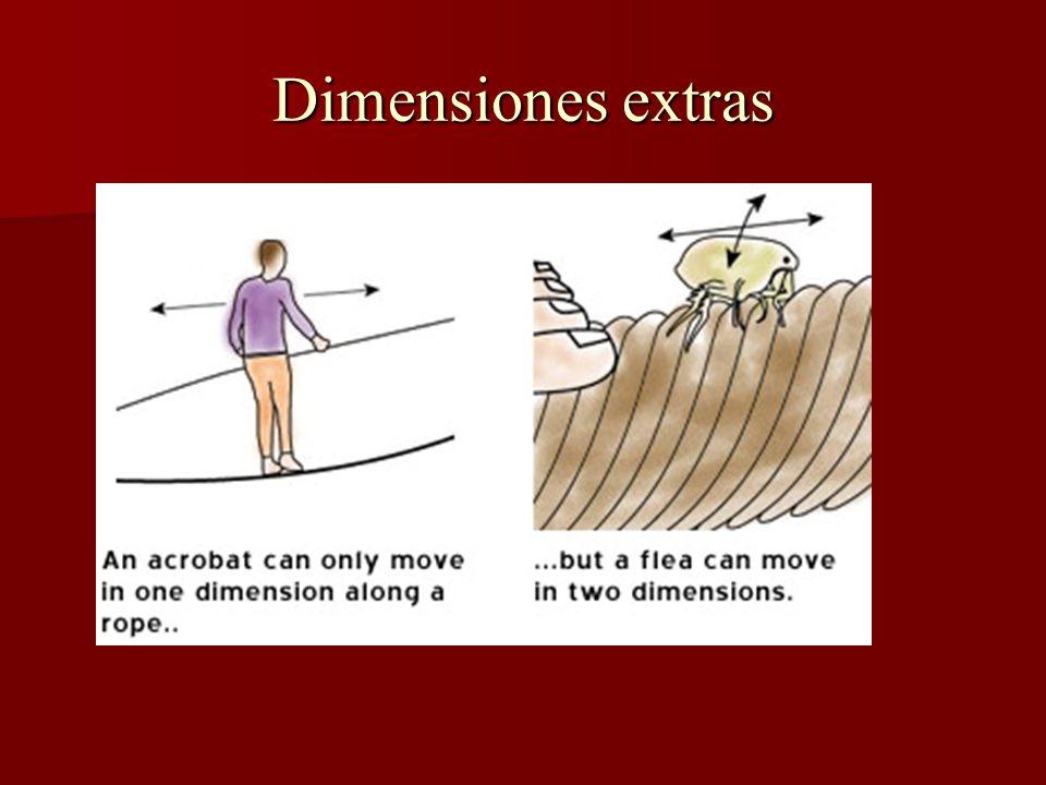 Dimensiones extras