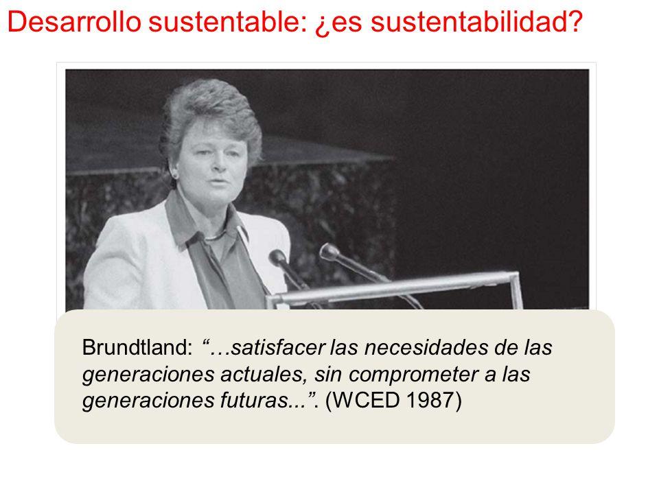 Brundtland: …satisfacer las necesidades de las generaciones actuales, sin comprometer a las generaciones futuras... .