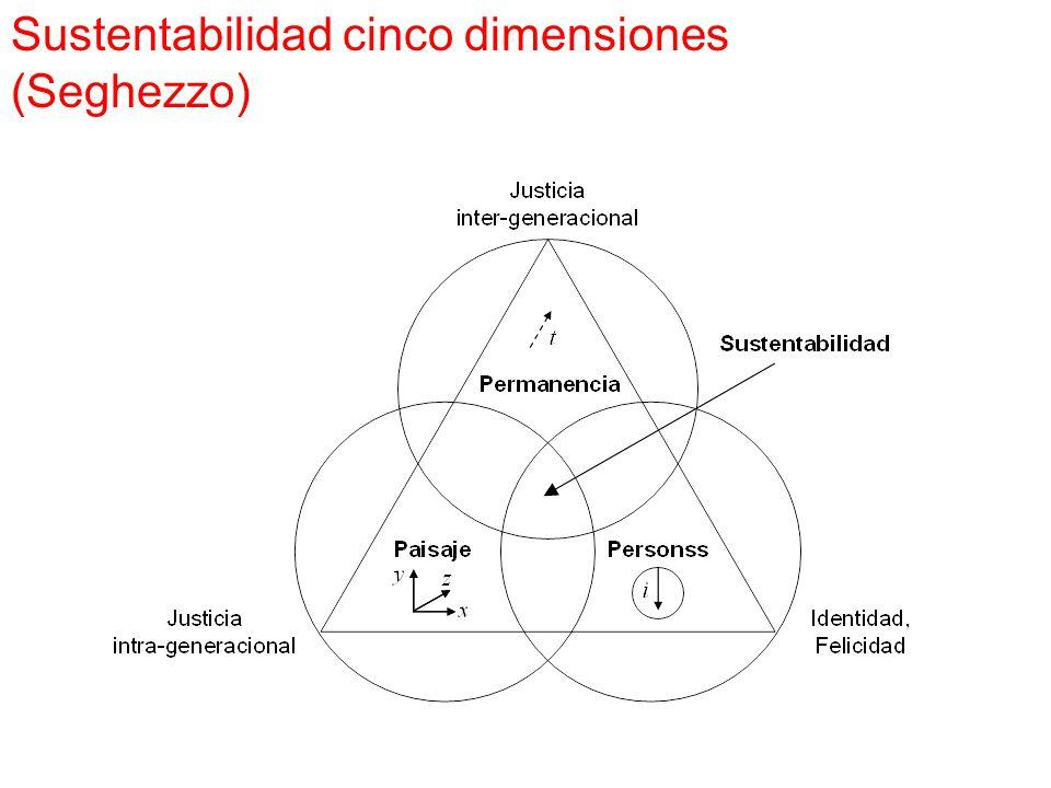Sustentabilidad cinco dimensiones (Seghezzo)