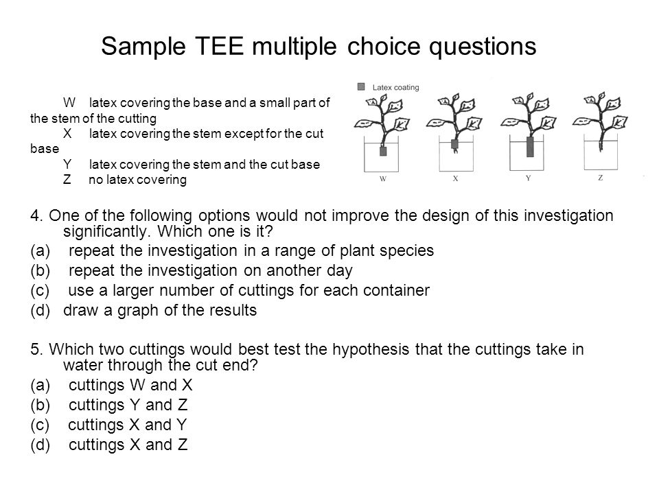 Sample TEE multiple choice questions 4.
