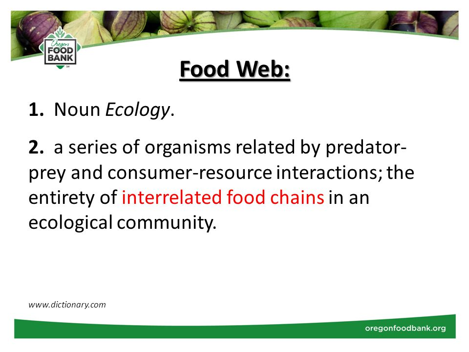 1. Noun Ecology. 2. a series of organisms related by predator- prey and consumer-resource interactions; the entirety of interrelated food chains in an