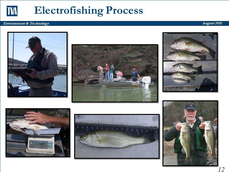 Environment & Technology August 2011 Electrofishing Process 12