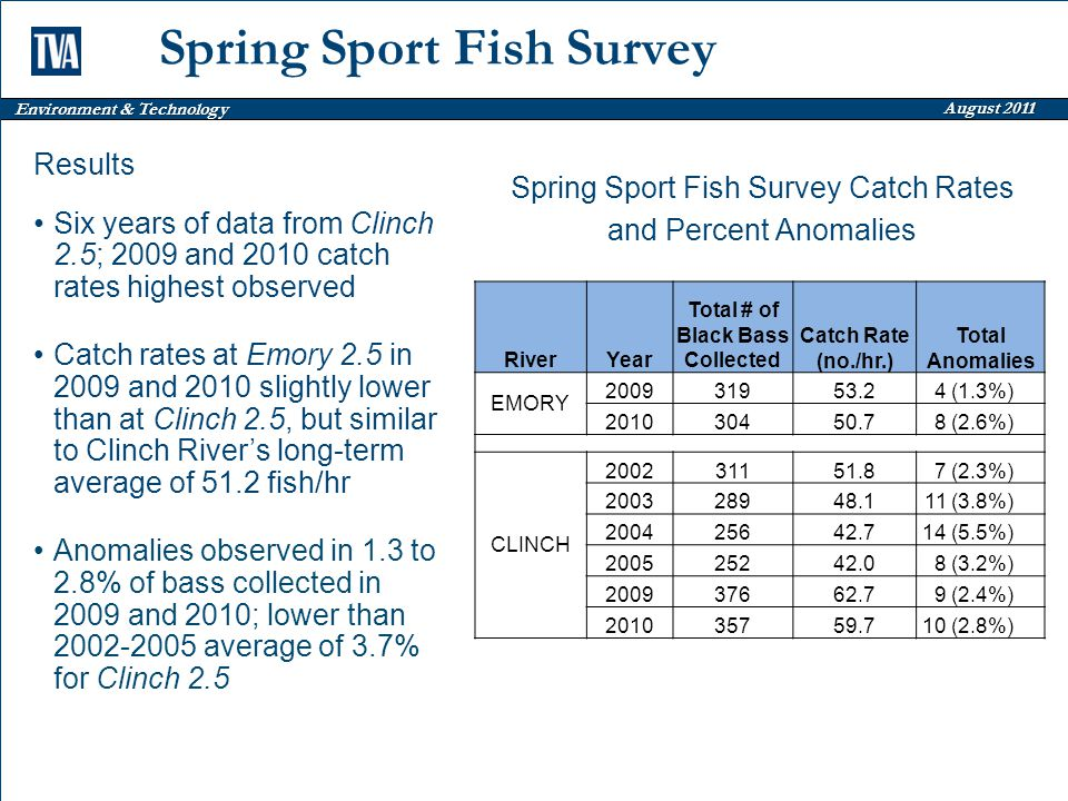Environment & Technology August 2011 Spring Sport Fish Survey RiverYear Total # of Black Bass Collected Catch Rate (no./hr.) Total Anomalies EMORY 200931953.24 (1.3%) 201030450.78 (2.6%) CLINCH 200231151.87 (2.3%) 200328948.111 (3.8%) 200425642.714 (5.5%) 200525242.08 (3.2%) 200937662.79 (2.4%) 201035759.710 (2.8%) Results Six years of data from Clinch 2.5; 2009 and 2010 catch rates highest observed Catch rates at Emory 2.5 in 2009 and 2010 slightly lower than at Clinch 2.5, but similar to Clinch River's long-term average of 51.2 fish/hr Anomalies observed in 1.3 to 2.8% of bass collected in 2009 and 2010; lower than 2002-2005 average of 3.7% for Clinch 2.5 Spring Sport Fish Survey Catch Rates and Percent Anomalies