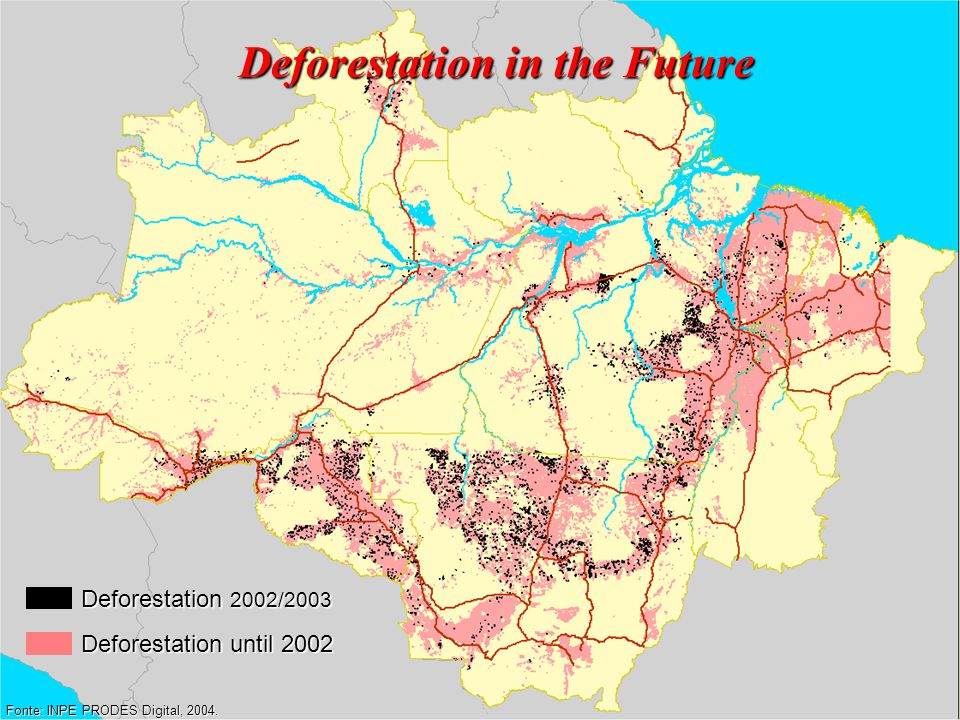 Deforestation in the Future Fonte: INPE PRODES Digital, 2004.