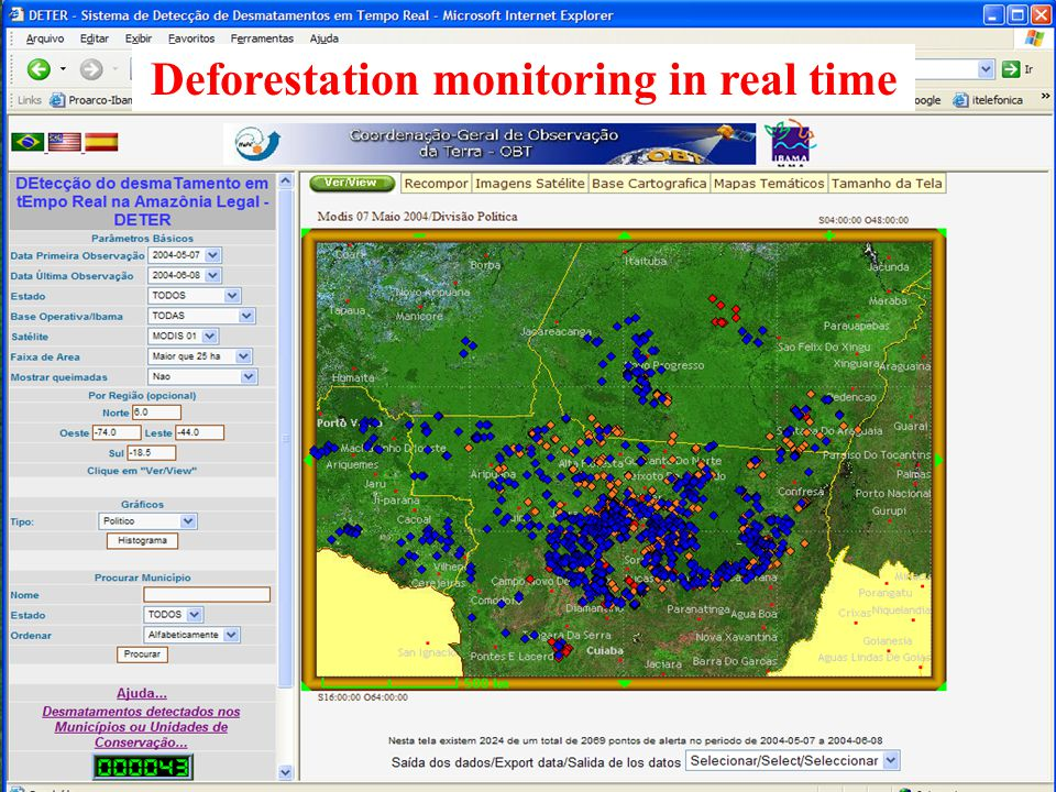 Deforestation monitoring in real time