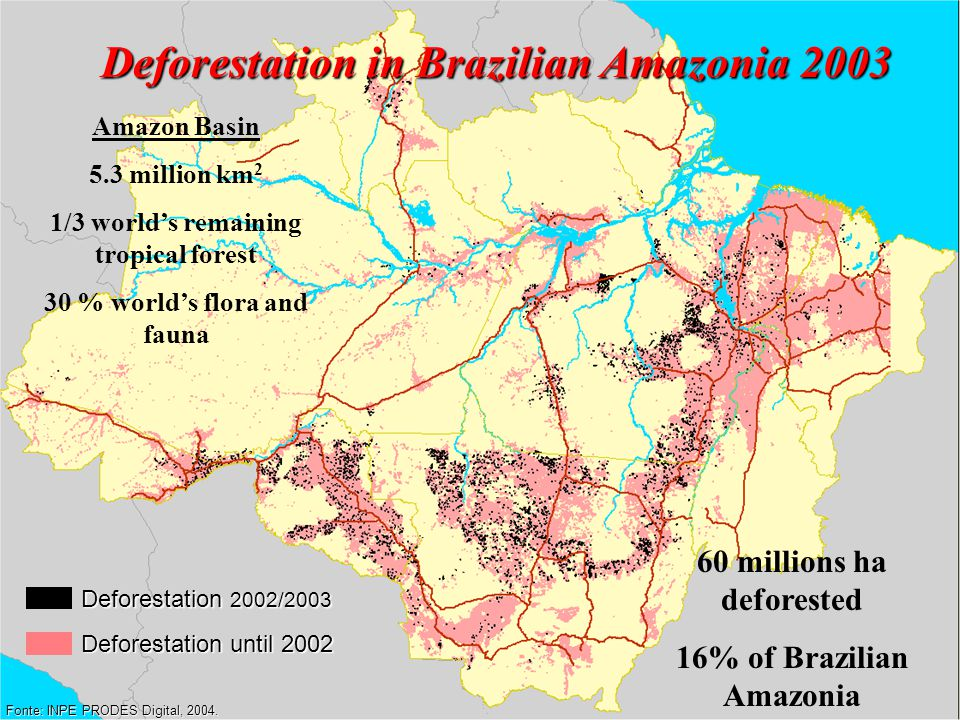 Deforestation in Brazilian Amazonia 2003 Fonte: INPE PRODES Digital, 2004.