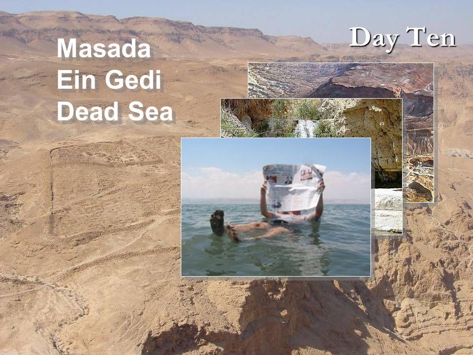 Day Ten Masada Ein Gedi Dead Sea Masada Ein Gedi Dead Sea