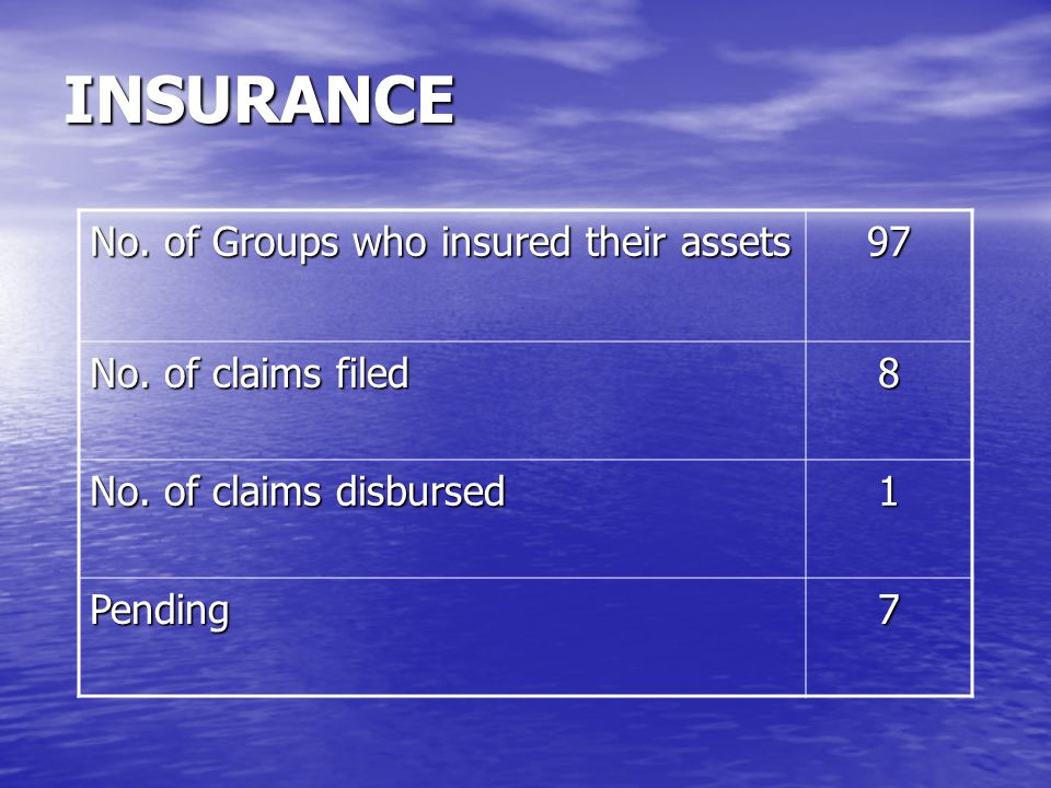 INSURANCE No.of Groups who insured their assets 97 No.