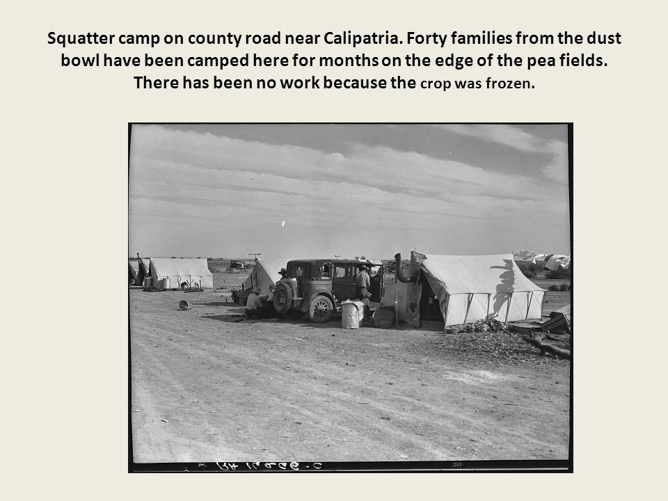 Squatter camp on county road near Calipatria.