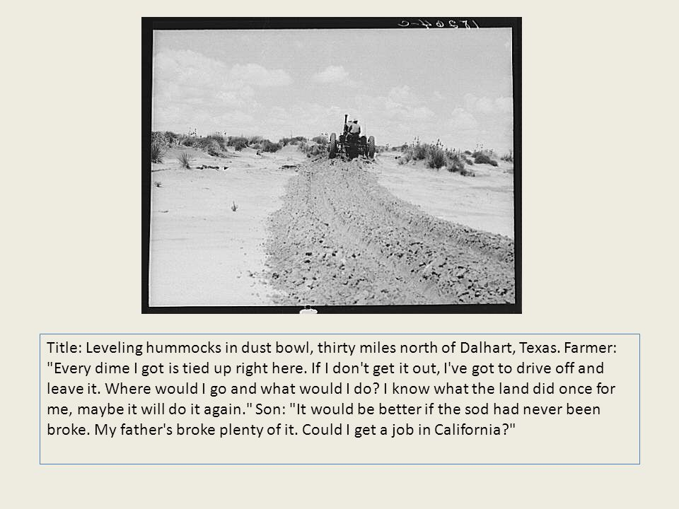 Title: Leveling hummocks in dust bowl, thirty miles north of Dalhart, Texas. Farmer: