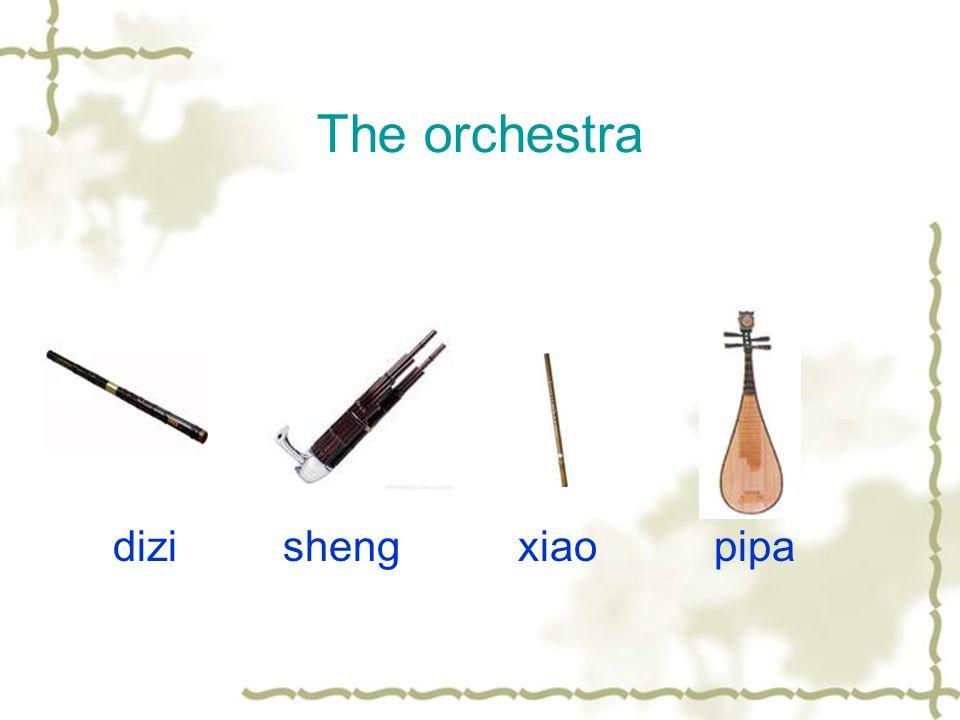 The orchestra dizi sheng xiao pipa