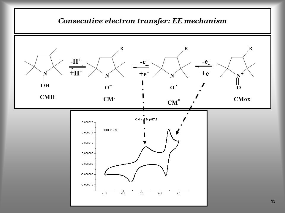 15 -e - +e - -e - +e - CM - CM. CMox R N O – N O · R N + O R CMH N OH -H + +H + Consecutive electron transfer: EE mechanism