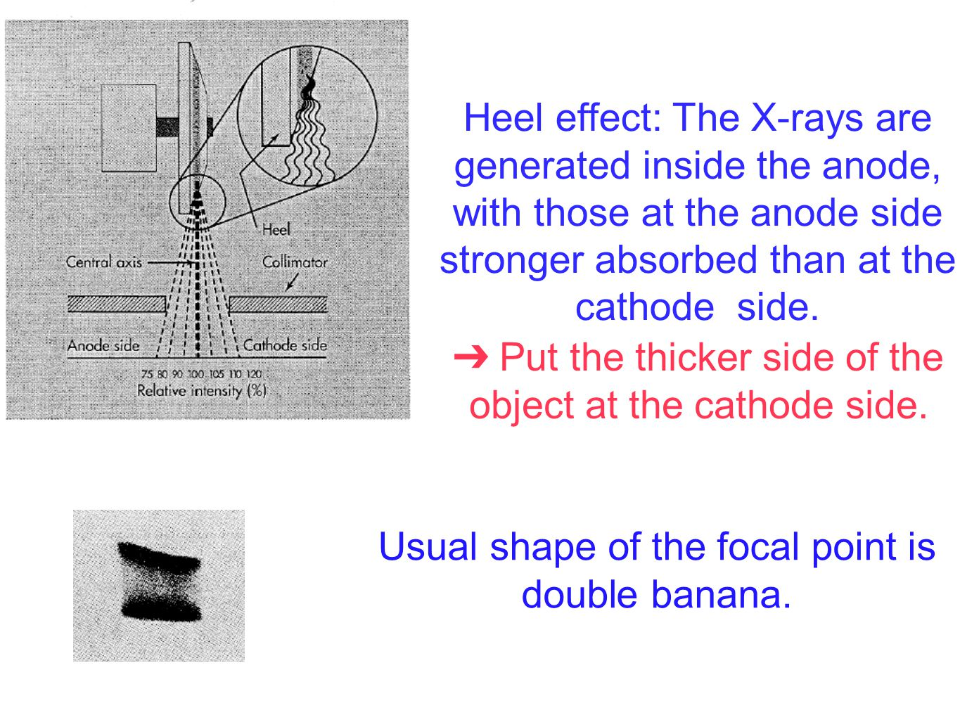 Heel effect: The X-rays are generated inside the anode, with those at the anode side stronger absorbed than at the cathode side. Usual shape of the fo