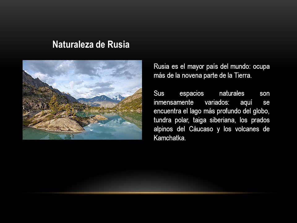 Naturaleza de Rusia Rusia es el mayor país del mundo: ocupa más de la novena parte de la Tierra. Sus espacios naturales son inmensamente variados: aqu