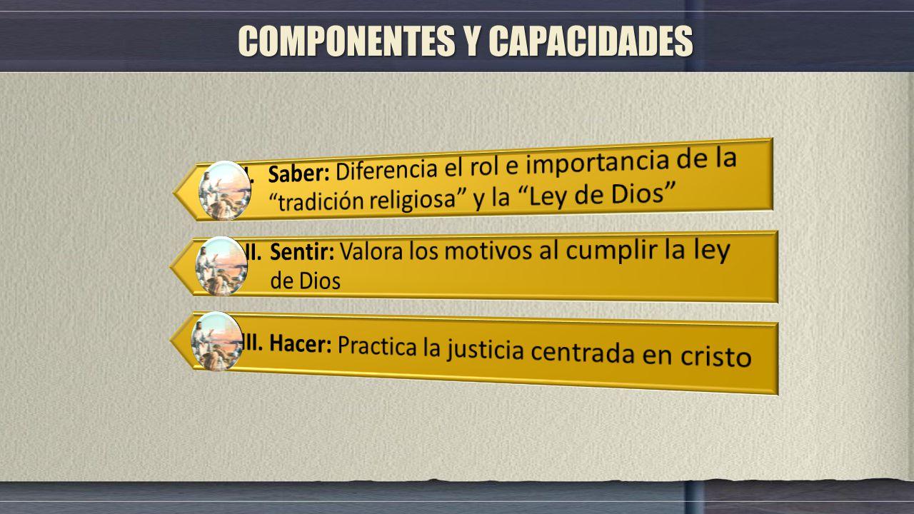 COMPONENTES Y CAPACIDADES