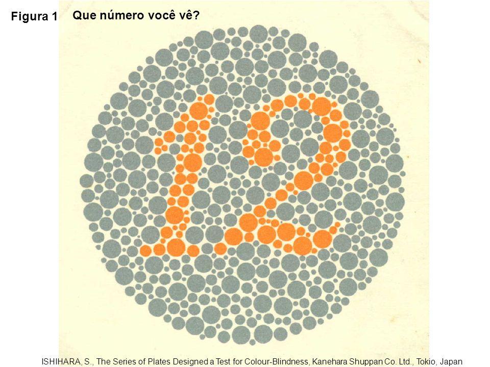 Figura 12 ISHIHARA, S., The Series of Plates Designed a Test for Colour-Blindness, Kanehara Shuppan Co.