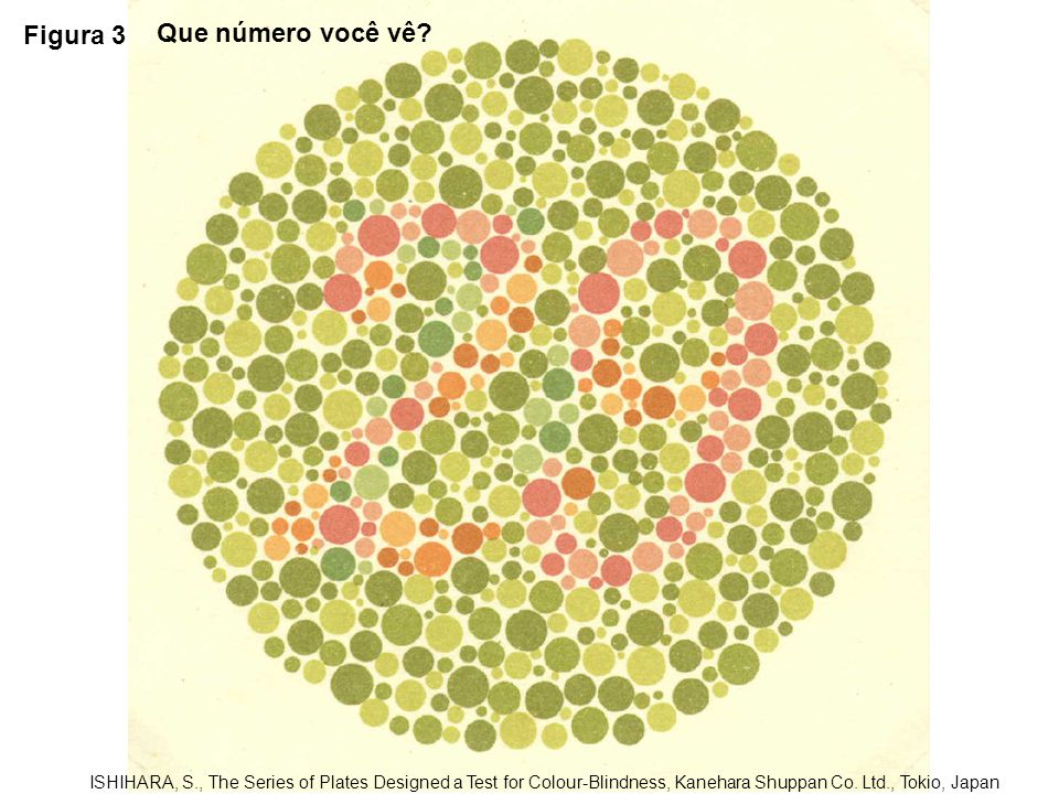 Figura 4 ISHIHARA, S., The Series of Plates Designed a Test for Colour-Blindness, Kanehara Shuppan Co.