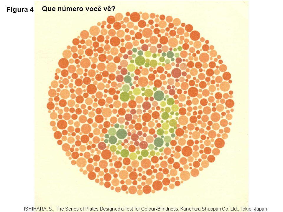 Figura 5 ISHIHARA, S., The Series of Plates Designed a Test for Colour-Blindness, Kanehara Shuppan Co.