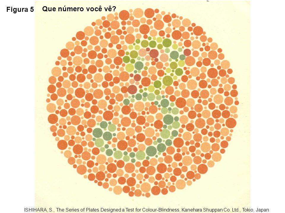 Figura 6 ISHIHARA, S., The Series of Plates Designed a Test for Colour-Blindness, Kanehara Shuppan Co.