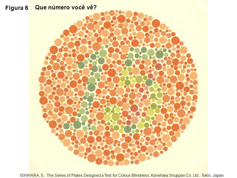 Figura 17 ISHIHARA, S., The Series of Plates Designed a Test for Colour-Blindness, Kanehara Shuppan Co.