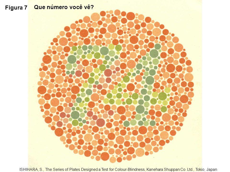 Figura 8 ISHIHARA, S., The Series of Plates Designed a Test for Colour-Blindness, Kanehara Shuppan Co.