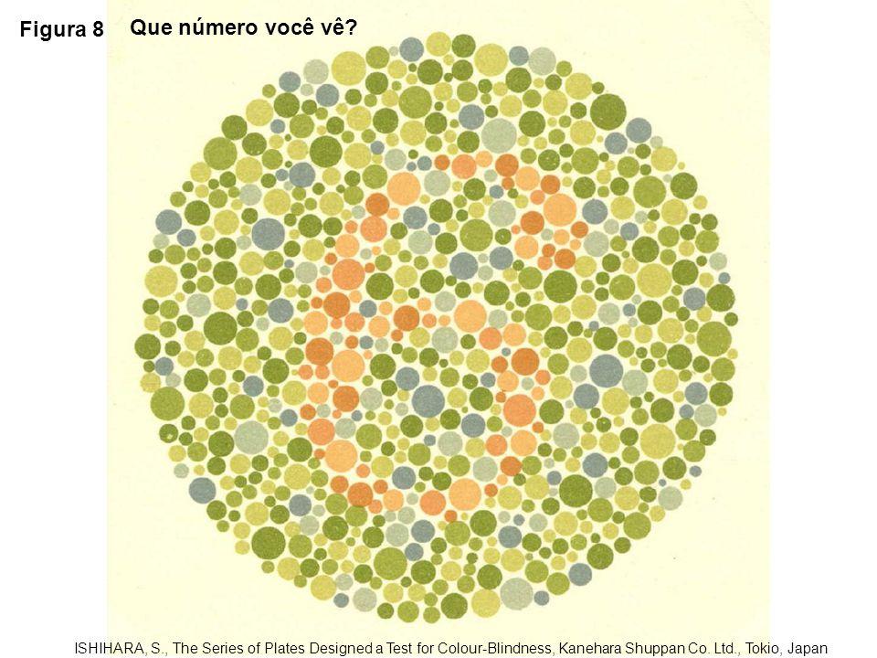 Figura 9 ISHIHARA, S., The Series of Plates Designed a Test for Colour-Blindness, Kanehara Shuppan Co.