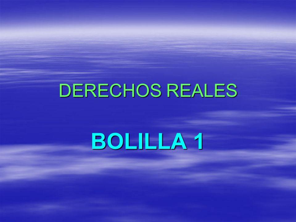 DERECHOS REALES BOLILLA 1