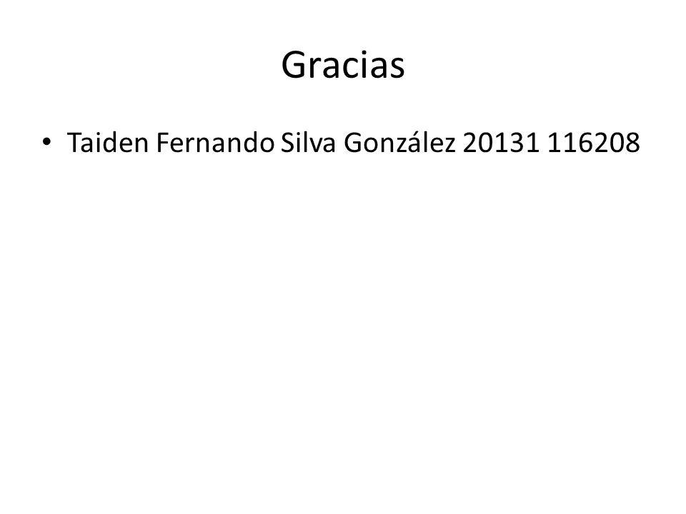 Gracias Taiden Fernando Silva González 20131 116208