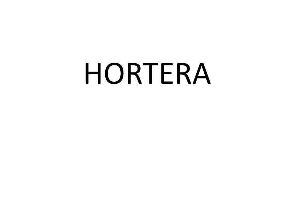 HORTERA