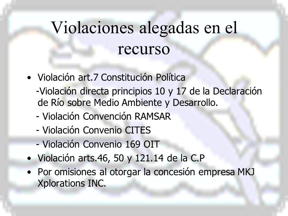 Violaciones alegadas en el recurso Violación art.7 Constitución Política -Violación directa principios 10 y 17 de la Declaración de Río sobre Medio Ambiente y Desarrollo.