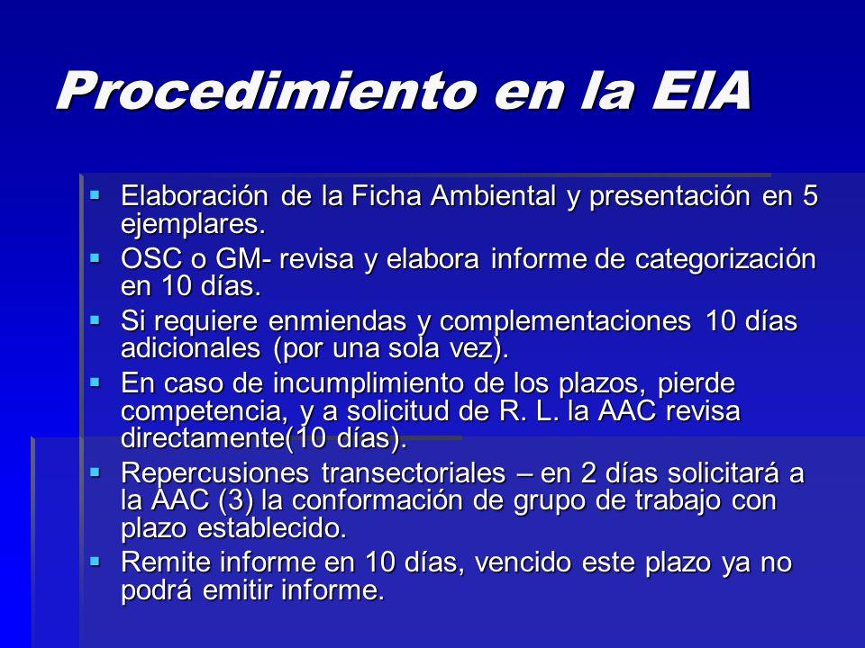 Procedimiento en la EIA  Elaboración de la Ficha Ambiental y presentación en 5 ejemplares.